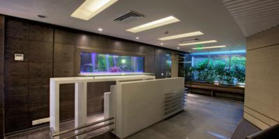 IBM-Head-Office